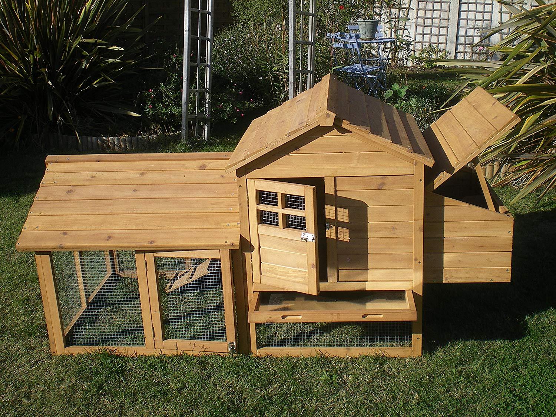 Poulailler dans le jardin